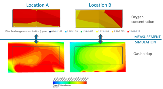 Validation of CFD model based on dissolved oxygen profiles and gradients